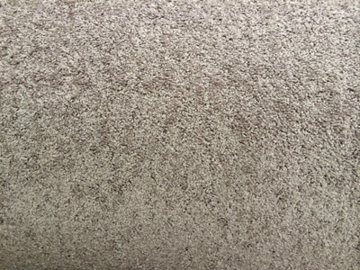 Builder's Grade Carpet